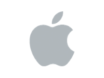 Apple grey logo